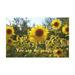 Sunflower canvas gallery wrapped canvas