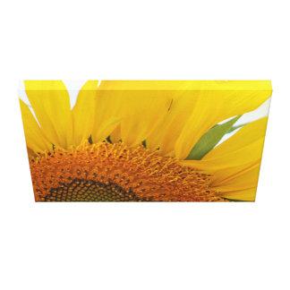 Sunflower Canvas Print Design #1