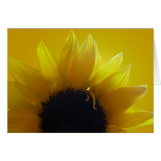 Sunflower Card Yellow Flower Greeting Card