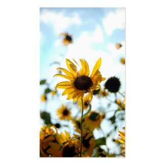 Sunflower Cards Pack Of Standard Business Cards