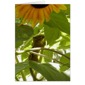 Sunflower & Chipmunk Card