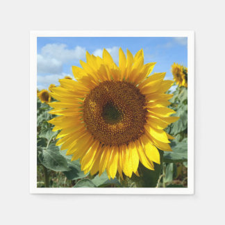 Sunflower Cocktail Paper Napkins