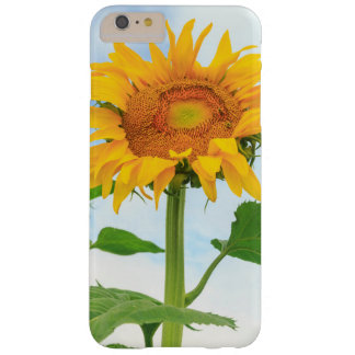 Sunflower, community garden, Moses Lake, WA, USA Barely There iPhone 6 Plus Case
