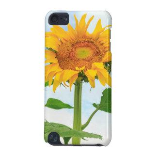 Sunflower, community garden, Moses Lake, WA, USA iPod Touch 5G Case