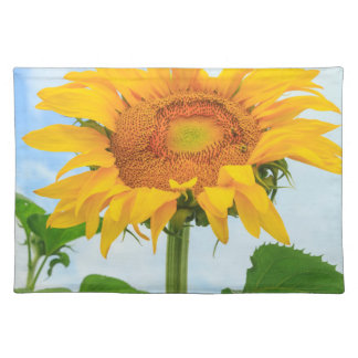 Sunflower, community garden, Moses Lake, WA, USA Placemat