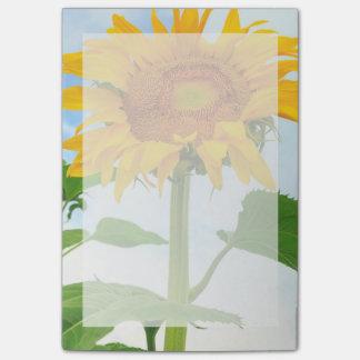 Sunflower, community garden, Moses Lake, WA, USA Post-it Notes