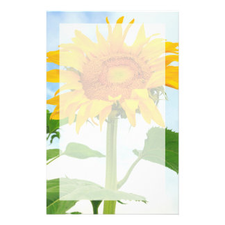 Sunflower, community garden, Moses Lake, WA, USA Stationery