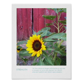 Sunflower Country Photograph & Inspirational Quote Poster
