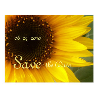 Sunflower Customizeable Save the Date Postcard