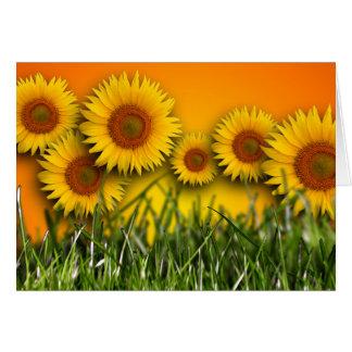 Sunflower Dawn Blank Greeting Card