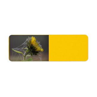 Sunflower Decorated By A Spiderweb Avery Label Return Address Label