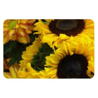 Sunflower Fall Flowers Vinyl Magnets