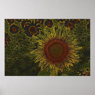Sunflower Field 36 x 24 Poster
