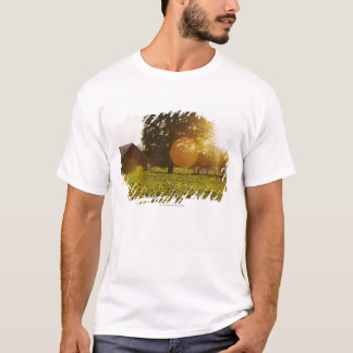 Sunflower Field At Sunset With A Barn T-Shirt