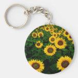sunflower field basic round button key ring