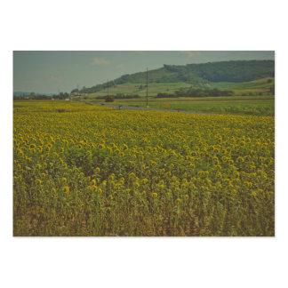Sunflower field business cards