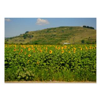 Sunflower field business card template