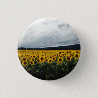 Sunflower Field Button