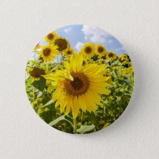 Sunflower Field Button
