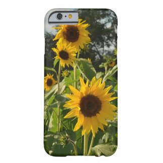 Sunflower Field Barely There iPhone 6 Case