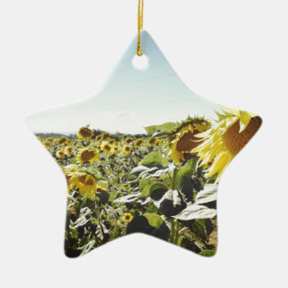 Sunflower field christmas ornament