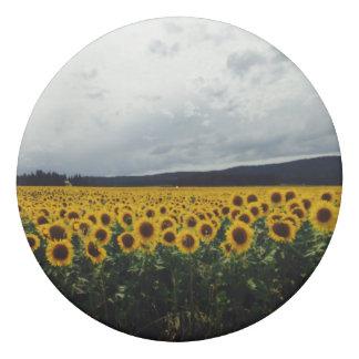 Sunflower Field Eraser