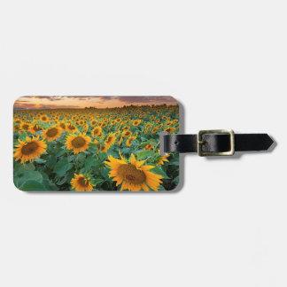 Sunflower Field in Longmont, Colorado Bag Tag