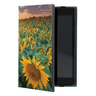Sunflower Field in Longmont, Colorado Case For iPad Mini