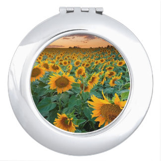 Sunflower Field in Longmont, Colorado Mirror For Makeup