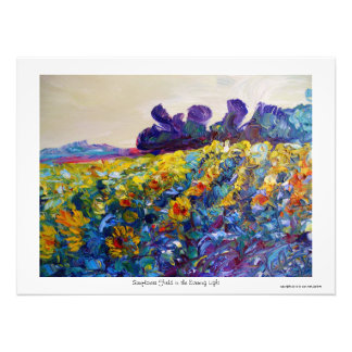 Sunflower Field in the Evening Light Photo Print