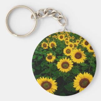 sunflower field keychains