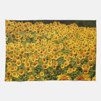 Sunflower Field Kitchen Towels