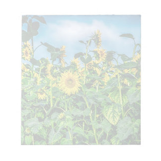 Sunflower Field Note Pad
