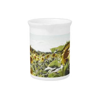Sunflower field pitcher