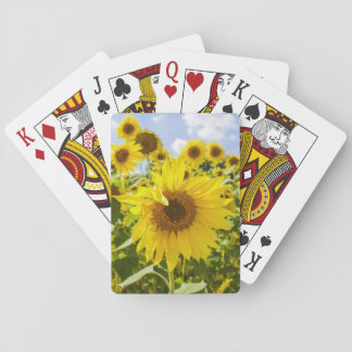 Sunflower Field Playing Cards