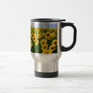 sunflower field stainless steel travel mug