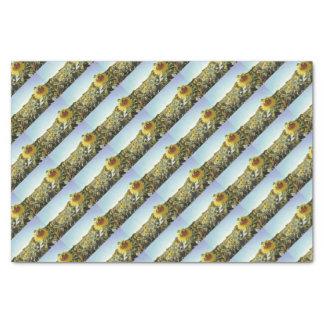 Sunflower field tissue paper