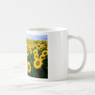 Sunflower Field Yellow Flowers Basic White Mug