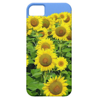 Sunflower Fields Barely There iPhone 5 Case