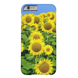 Sunflower Fields Barely There iPhone 6 Case