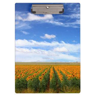 Sunflower Fields Clipboard