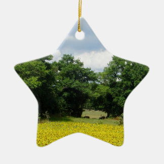 Sunflower Fields Limousin France Ceramic Star Decoration