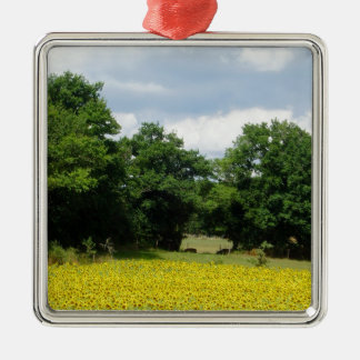 Sunflower Fields Limousin France Silver-Colored Square Decoration