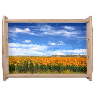 Sunflower Fields - serving tray