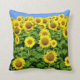 Sunflower Fields Throw Cushion