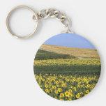 Sunflower fields, Tuscany, Italy Basic Round Button Key Ring
