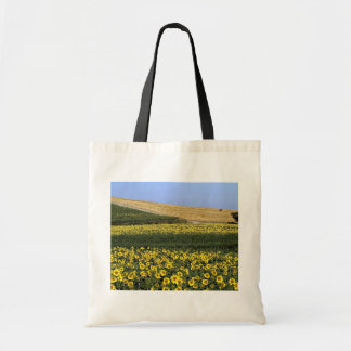 Sunflower fields, Tuscany, Italy Budget Tote Bag