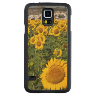 Sunflower fields, white hill town of Bornos Carved Maple Galaxy S5 Case
