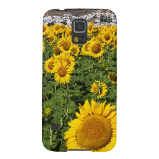 Sunflower fields, white hill town of Bornos Galaxy S5 Covers
