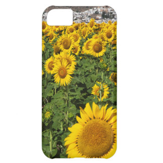 Sunflower fields, white hill town of Bornos iPhone 5C Case